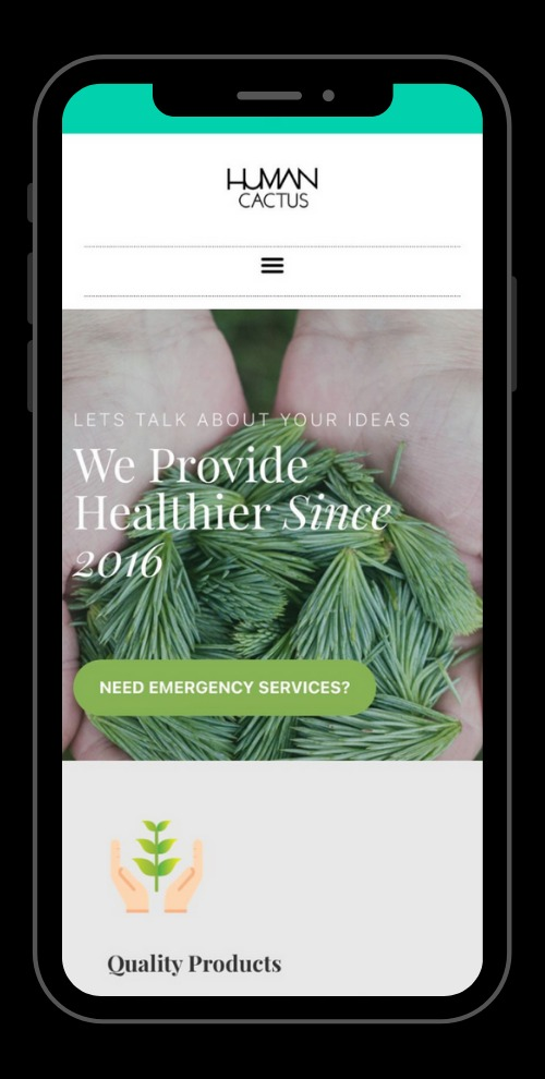 Mobile Friendly Website Display with responsive design7